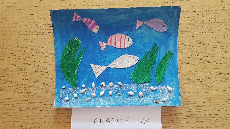 poisson-davril-charlie