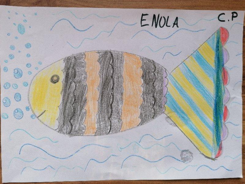 poisson-davril-enola
