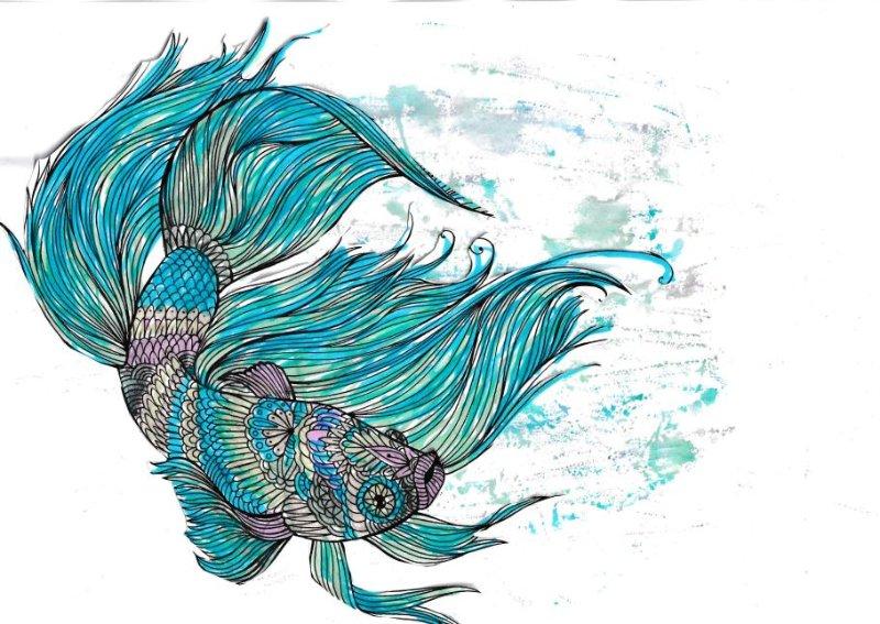 poisson-davril-victor