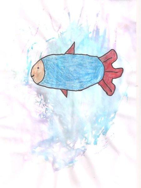 poisson-davril-robin