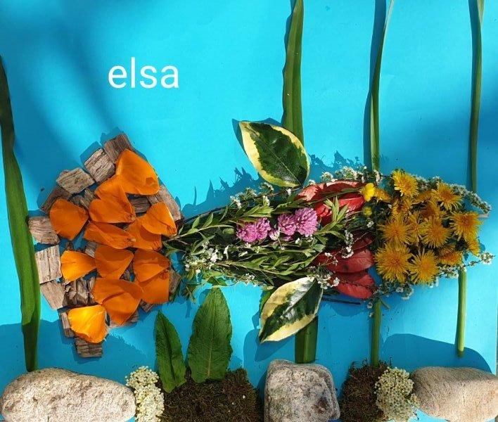 poisson-elsa-fieroch